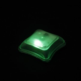 TMC SP Marker Light Personal Identification LED (Green)